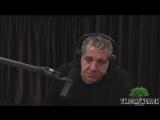 Джо Роган и Джои Диаз о бое Хабиб vs Тони