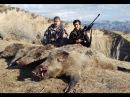 Цикл Таджикистан охотничий 4 серия Охота на кабана в Таджикистане с луком и стрелами