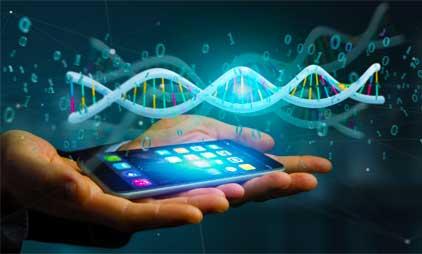 Что такое ДНК?