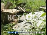 Вандализм со школьной скамьи - 46 могил на Лысковском кладбище оказались разрушенными руками детей