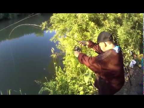 Рыбалка вечером на Ине ловим ловим уклейку и ельцов на пенопласт