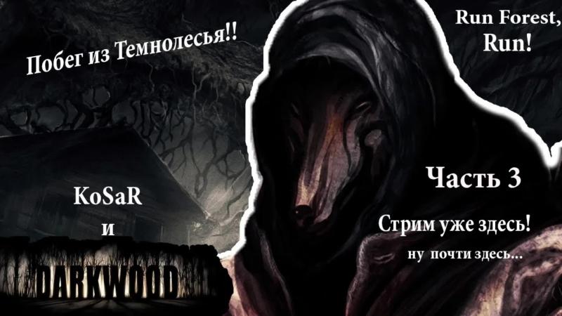 Darkwood | Побег из Темнолесья вместе с KoSaR | часть 3
