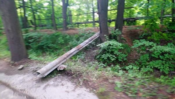 Дендрологический сад порос деревьями и оградку стало выворачивать из земли, ничего, забетонировали, восстановили.  7 июля 2018