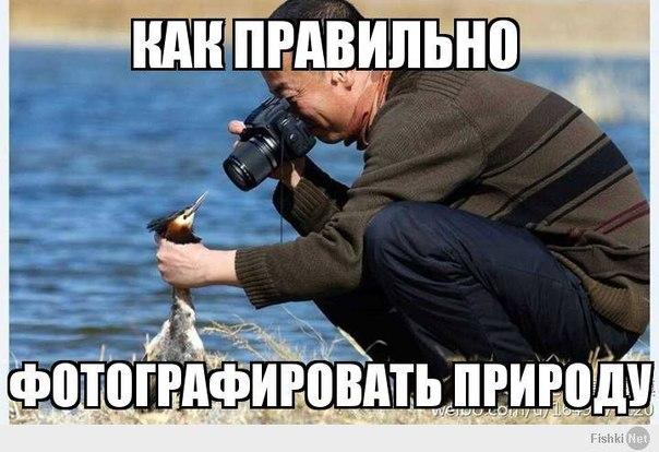 http://cs619120.vk.me/v619120477/34b3/jKwt5KS6o-s.jpg