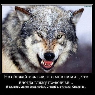 Саша Лаврик, 26 октября , Никополь, id33437596