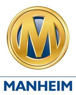аукцион манхейм украина