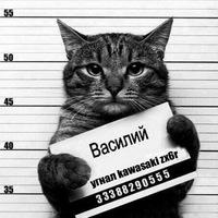 Анкета Павел Чугайнов