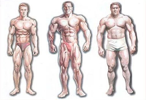 программа упражнений для похудения зале