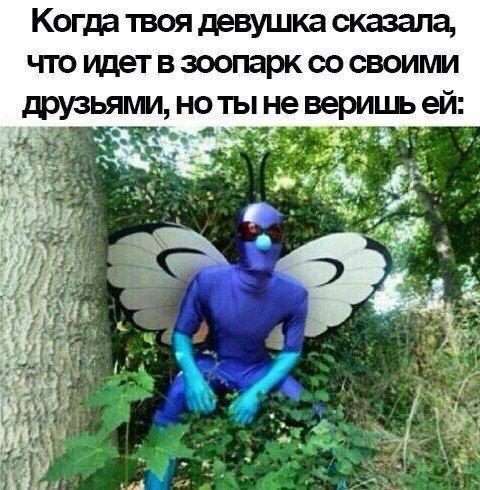 E0hOlnlyxwE.jpg