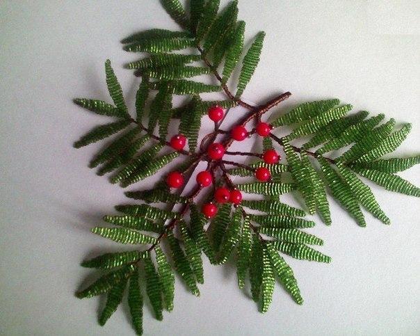 деревья | Записи в рубрике