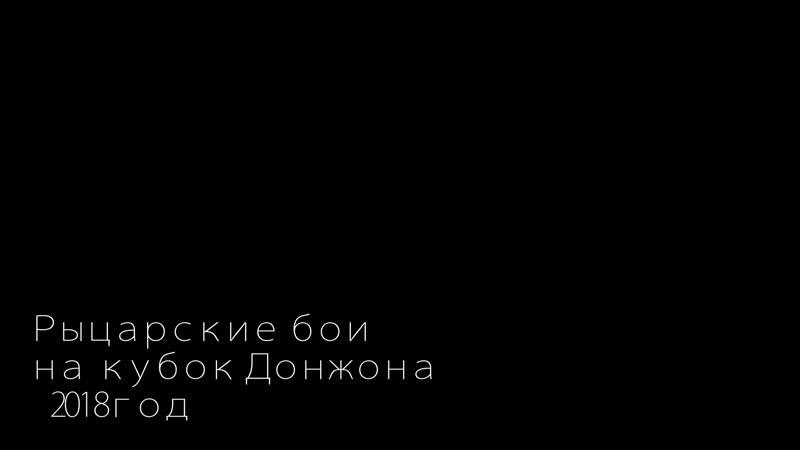 Зарайский ратный сбор 2018г. Одиночный бой на кубок Донжона