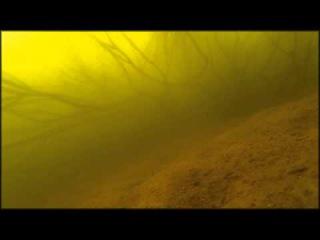 Рыбалка Волгоград 1 Тест камеры SJ4000 под водой