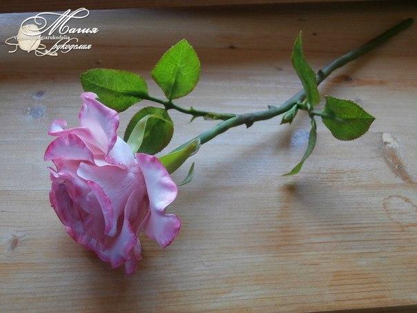 Холодный фарфор цветы для начинающих
