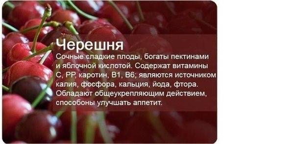 http://cs620517.vk.me/v620517958/11ee3/XOGWycoyKG4.jpg
