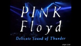 Pink Floyd Shine On You Crazy Diamond In Concert Delicate Sound Of Thunder NYC USA 1989 HD