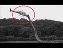 二戰飛行員竟遭遇「超巨大剛果蛇」真實事件! 有字幕