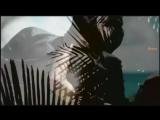 C.C. Catch - You Can Be My Lucky Star Tonight (DJ Night Killer remix) ( 480 X 854 ).mp4