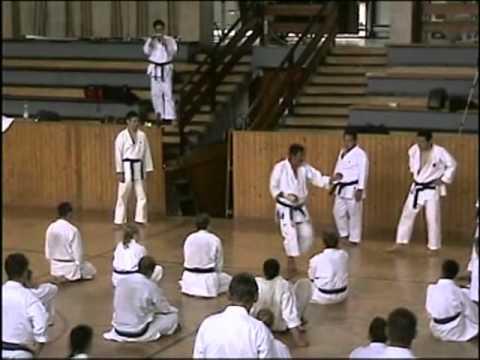 IJKA Edzőtábor 2009, Sadashige Kato (1. Rész)
