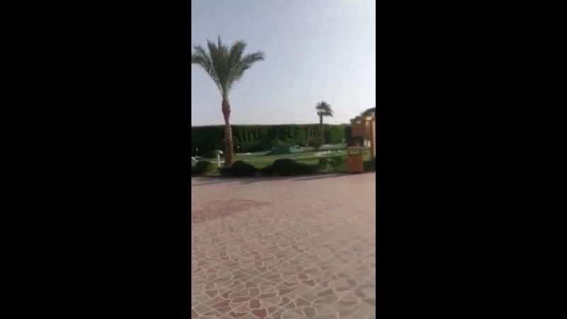 Территория отеля TIA HEIGHTS MAKADI BAY 5 ( Хургада)