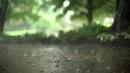 'Rainstorm' Liquid Drum Bass Mix ft S P Y Etherwood Metrik Keeno more Mix 118