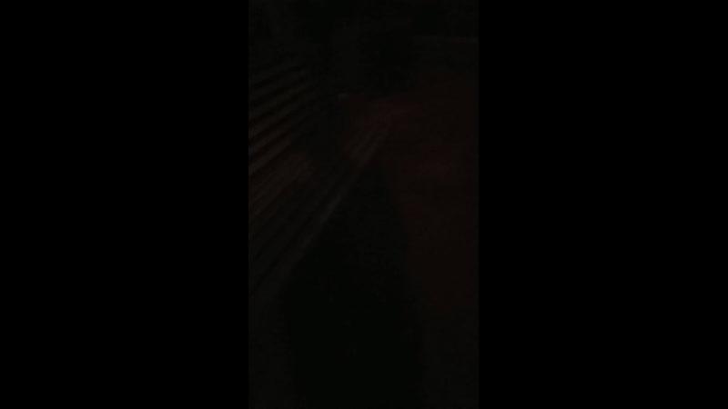 Барвиха ночью