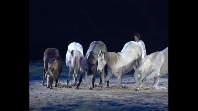 Лошадь на свободе - Жан Франсуа Пиньон ( Золотая грива - 2009 ) ...
