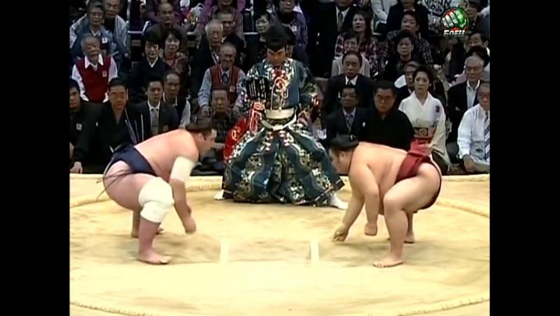 Kyushu Basho: Days 10-12 (2014)