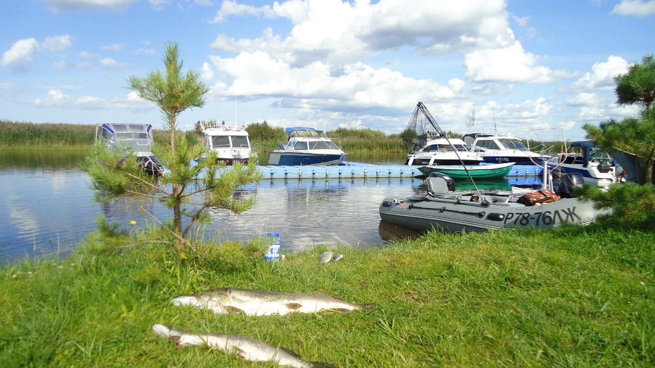 рыболовные базы в ленинградской области в креницах