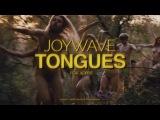 Joywave -