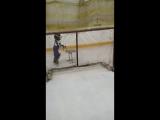 Саша учится кататься