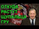 Российская разведка засветилась и в Америке Аарне Веедла