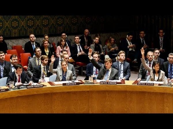 Россию не услышали: украинская провокация утонула в процедурных вопросах Совбеза ООН