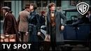 Fantastic Beasts The Crimes of Grindelwald 'View' TV Spot Warner Bros UK