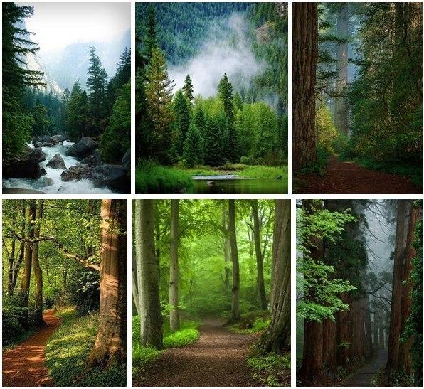 удевительные пейзажи