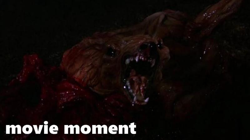 Нечто (1982) - Это что-то жуткое и страшное (210) | movie moment