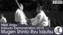 Mugen Shinto Ryu Iaijutsu Nagao Zenyu Meiji Jingu Kobudo Demonstration 2018