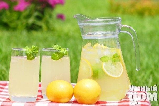 """Начинаем утро с полезного напитка Тебе понадобится всего 2 минуты на то, чтобы сделать этот """"эликсир жизни"""", зато сколько пользы! 1. Ты укрепишь иммунную систему. Лимон богат витамином С и калием. Он стимулирует мозг и нервную систему, контролирует кровяное давление. 2. Напиток выровняет щелочной баланс, ведь лимонная кислота не повышает кислотность. 3. Ты будешь быстрее худеть. Сок лимона содержит пектин, который помогает организму бороться с чувством голода. Кроме того, было…"""