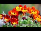 Строгий капрал (Как хорошо быть генералом) - ВИА Голубые гитары HD 1080 (Subtitles)