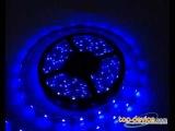 Светодиодная лента 5М (синий) в магазине Top-Device.com
