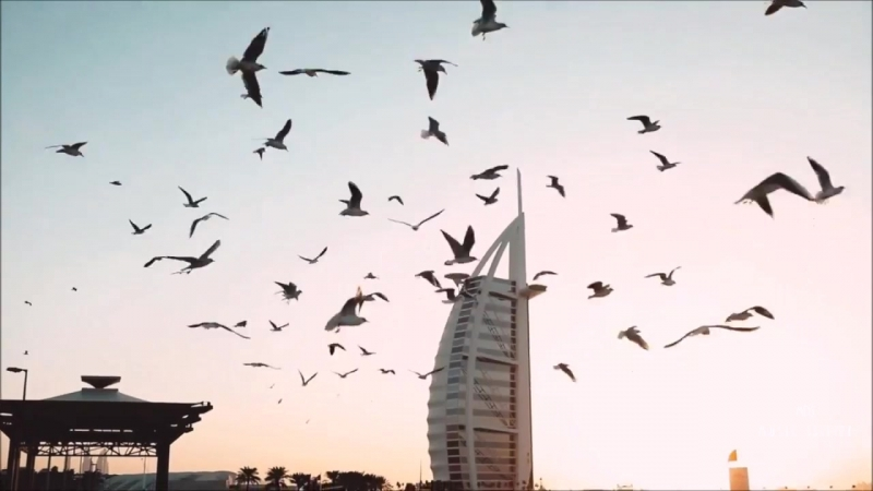 Dapa Deep Feat. Monee - Seasons (Video Edit)