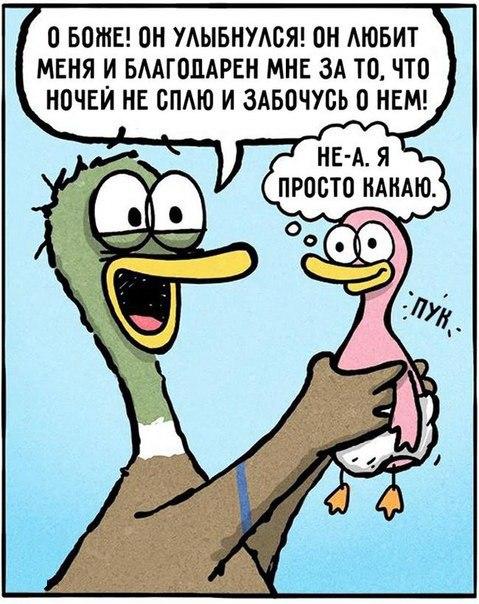 https://pp.vk.me/c543103/v543103477/7167/ke3upC1SeDg.jpg