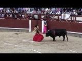 Испания. Коррида в Испании, экскурсия.