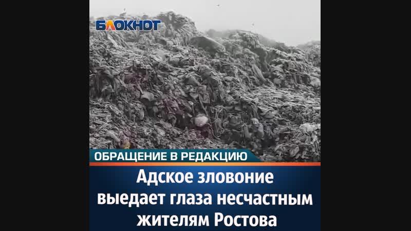 Адское зловоние выедает глаза несчастным жителям Ростова