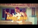 Animal Funk (19-20/07/2014) [Кам'янець-Подільський - Врублівці (ДОК Чайка)]