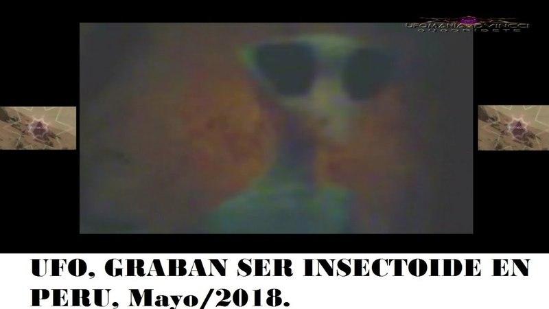 UFO, GRABAN SER INSECTOIDE EN PERU, Mayo2018.