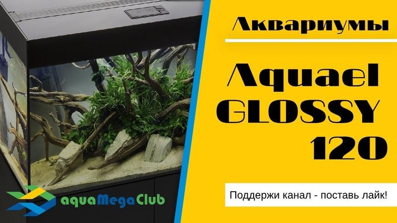 Аквариум Акваэль Глосси 120 AQUAEL GLOSSY обзор и варианты дизайна