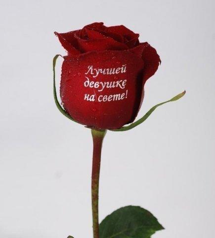 Цветы осень, картинки для любимой девушки с надписями наташа