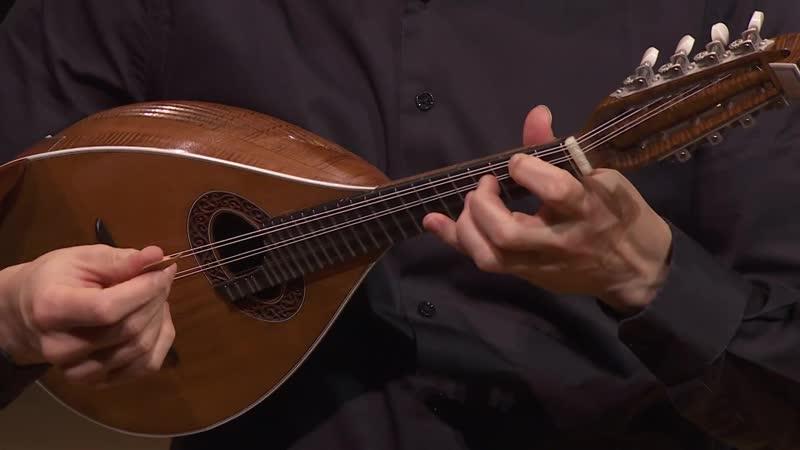 A. Vivaldi - Chamber Concerto in D major, RV 93 P 209 - Orchestre Philharmonique de Radio France [Rinaldo Alessandrini]