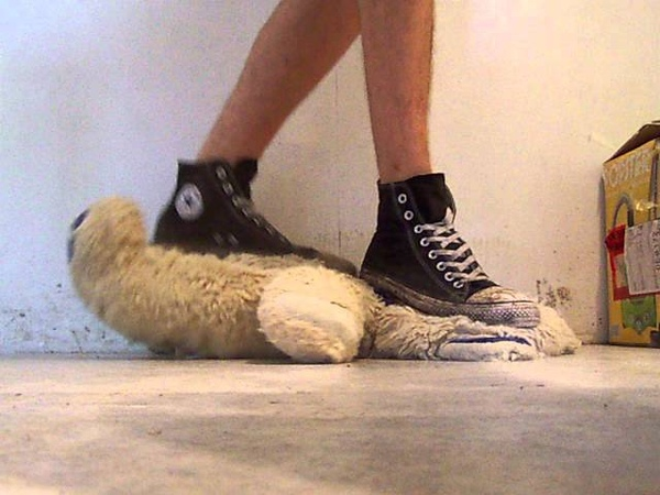 Trampling bear in Converse and barefeet