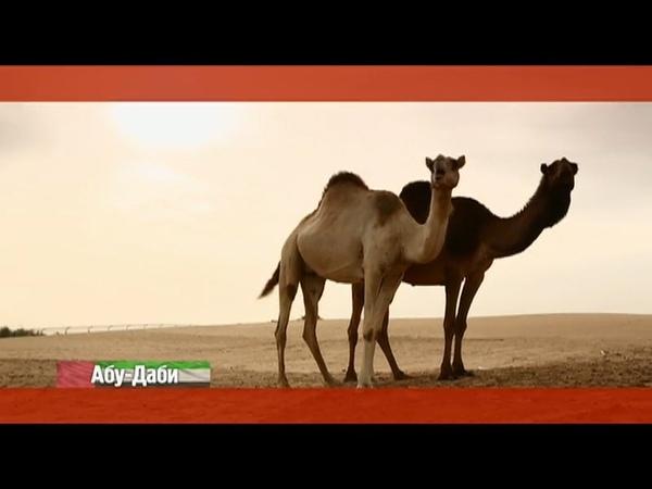 Орел и решка. Курортный сезон: Абу-Даби. ОАЭ